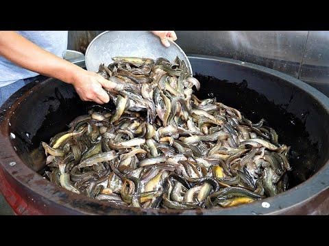"""1000인분! 엄청난 양을 끓이는 역대급 미꾸라지 추어탕집 /  Boiled mud-fishSoup """" Chueotang """" / Korean street food"""