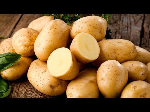 Не просто жареная картошка! 4 вкуснейших блюда на одной сковороде за полчаса! Рецепты Всегда Вкусно!